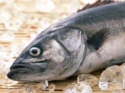 К чему снится замороженная рыба замороженная рыба во сне сонник