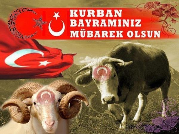 Курбан байрам поздравления на турецком с переводом