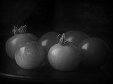 Сонник соленые помидоры к чему снится соленые помидоры во сне